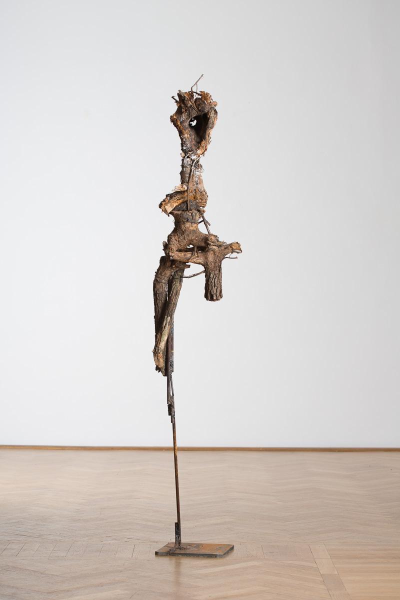 Daphne 3, iron, wood, 220 cm x 45 cm x 35 cm, 2014. photo: Walter Wetzler