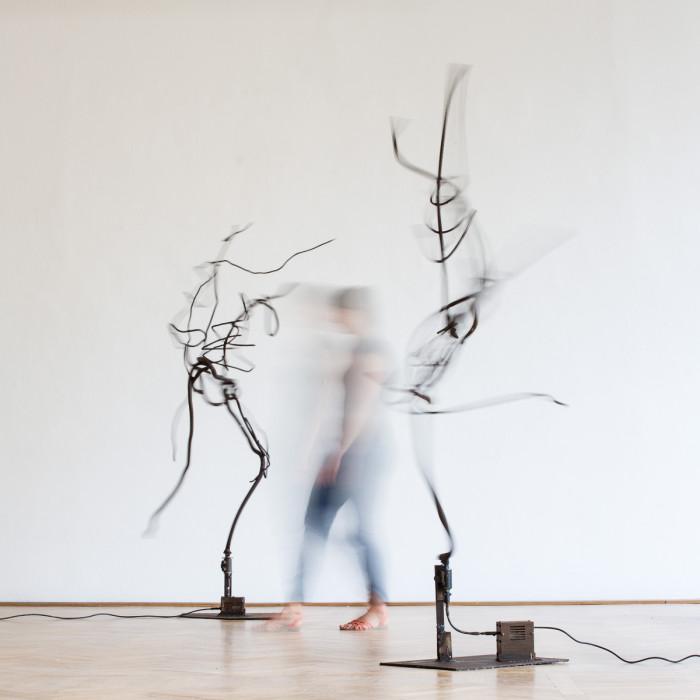 Move, iron, motor, 2012-2014. photo: Walter Wetzler