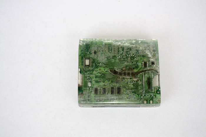ICS king kong crocodile, 2015, circuit board, casting resin
