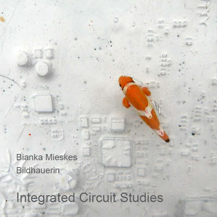 Integrated Circuit Studies