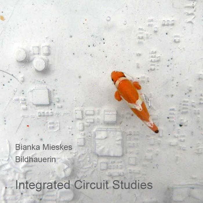 Integrated Circuit Studies