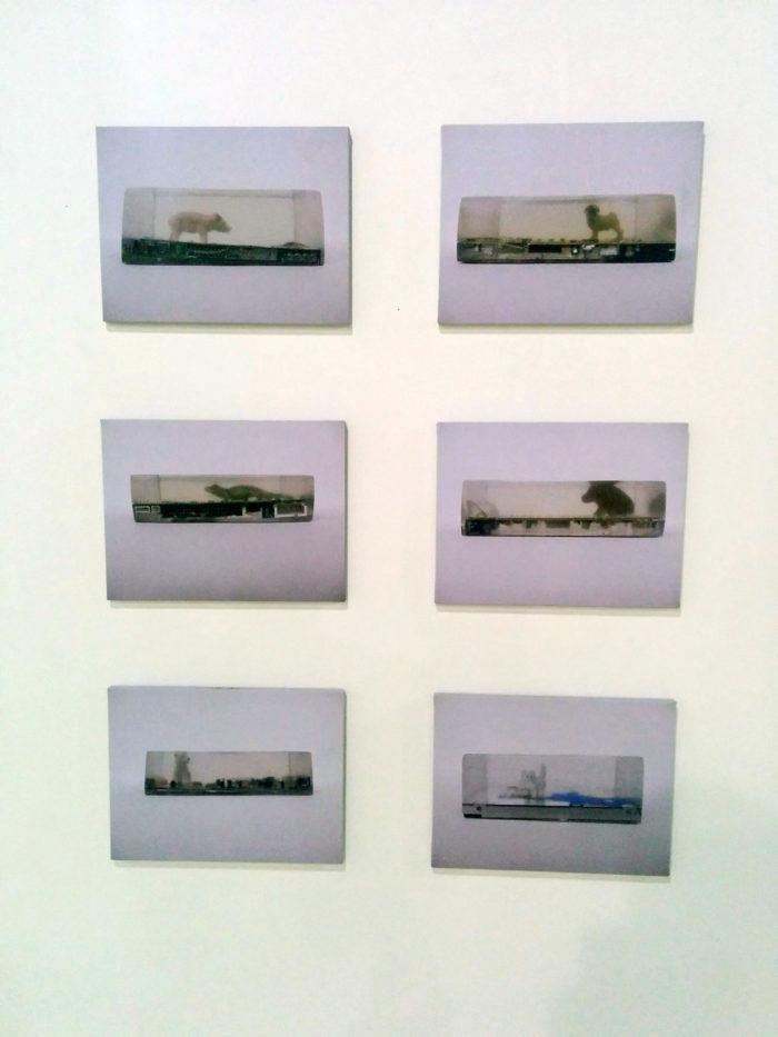Bianka Mieskes, preso, 2016, sechs Bilder á 49 cm x 39 cm